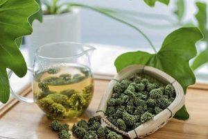 trà tốt cho sức khỏe người già